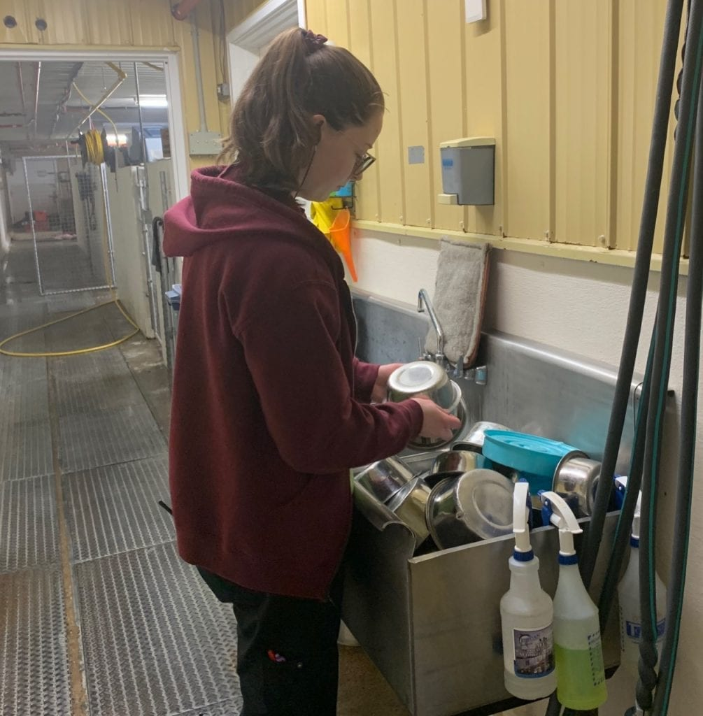 Club Mead employee washing dishes at the dog boarding kennel.